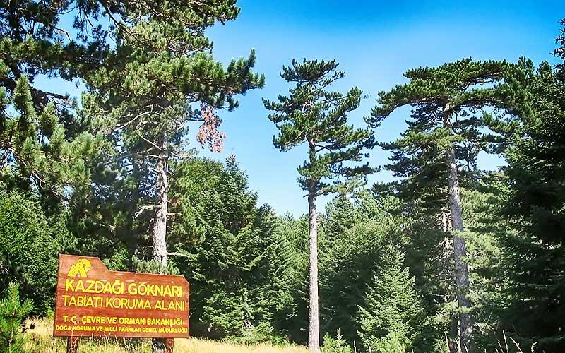 Kazdağı Milli ParkıKazdağı Milli Parkı